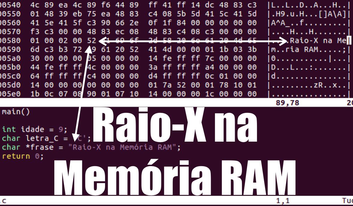 Programação em C: Raio-X na Memória RAM